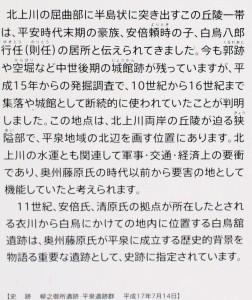 IMG_6802 - 拡大