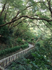 天祥温泉,途中の階段