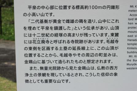 IMG_7807_1.jpg